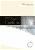 Visual Concrete: Control of blemishes